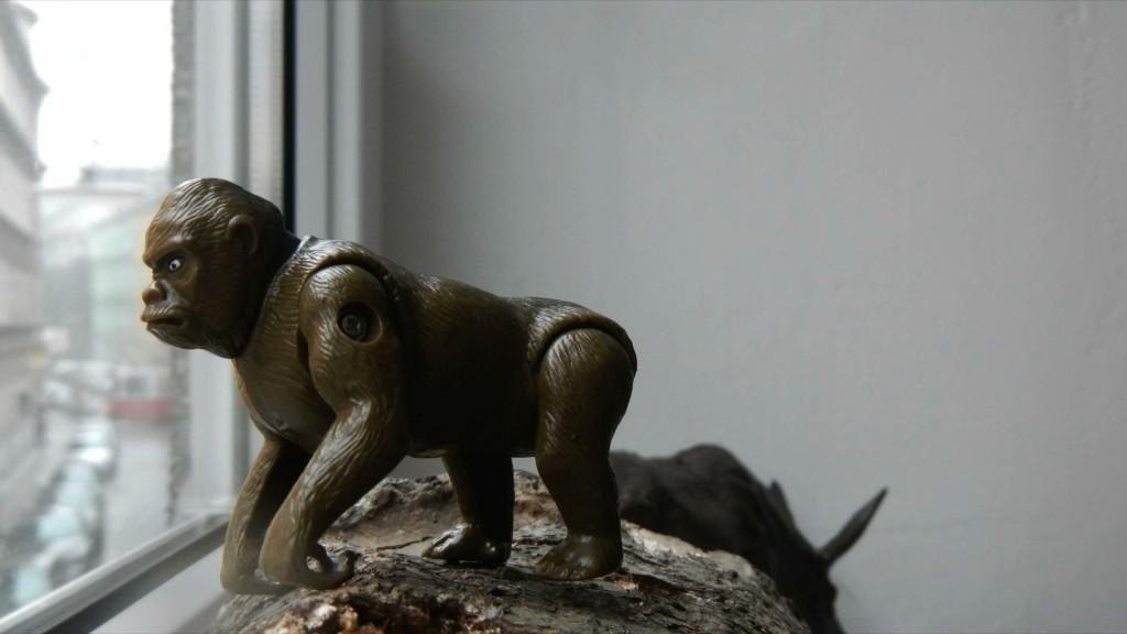 Monkey Home-3